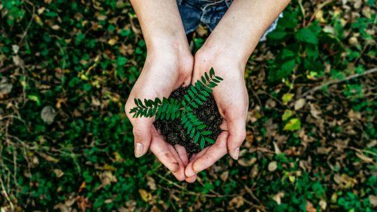 Ekologia to nasza pasja