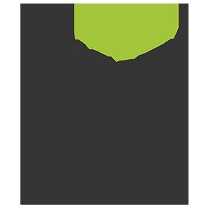 Logo Smooth The Fruit